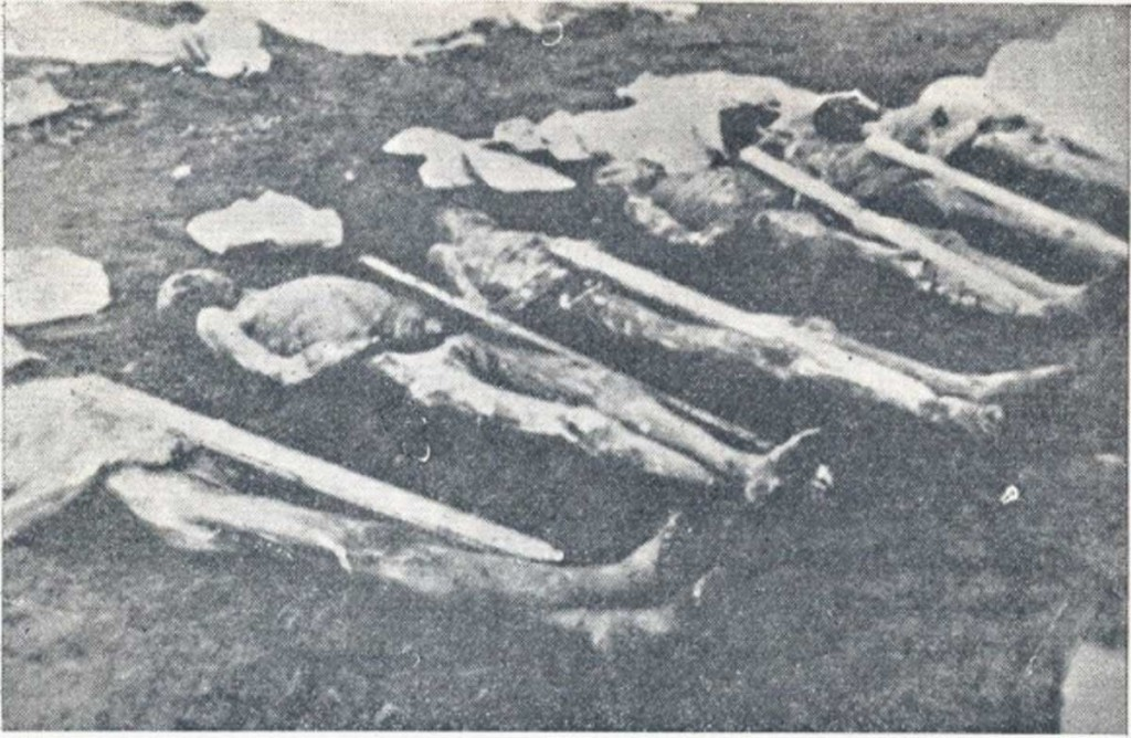Dead_inmates_at_the_Rab_concentration_camp