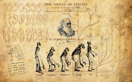 Charles_Darwin_Wallpaper_by_kinepipe