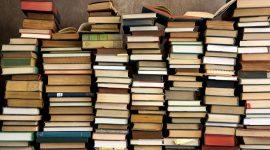 Le librerie indipendenti e il piacere dell'ignoto -Vulcano Statale