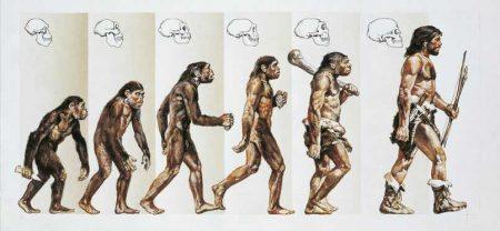 L'evoluzione umana. Un appunto -Vulcano Statale