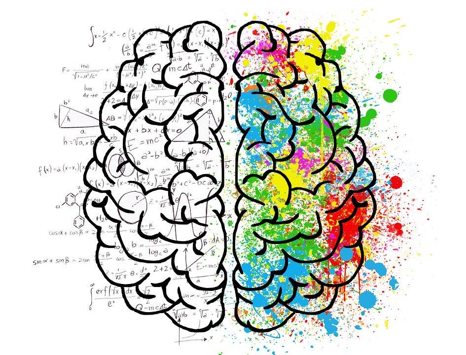 l'ombra della mente: la personalità