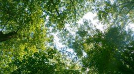 KlimatFest: un weekend dedicato al clima