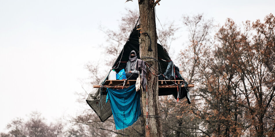 Il caso della foresta di Dannenröder riaccende i riflettori sulla crisi climatica